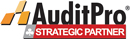 auditpro-strategic-partner